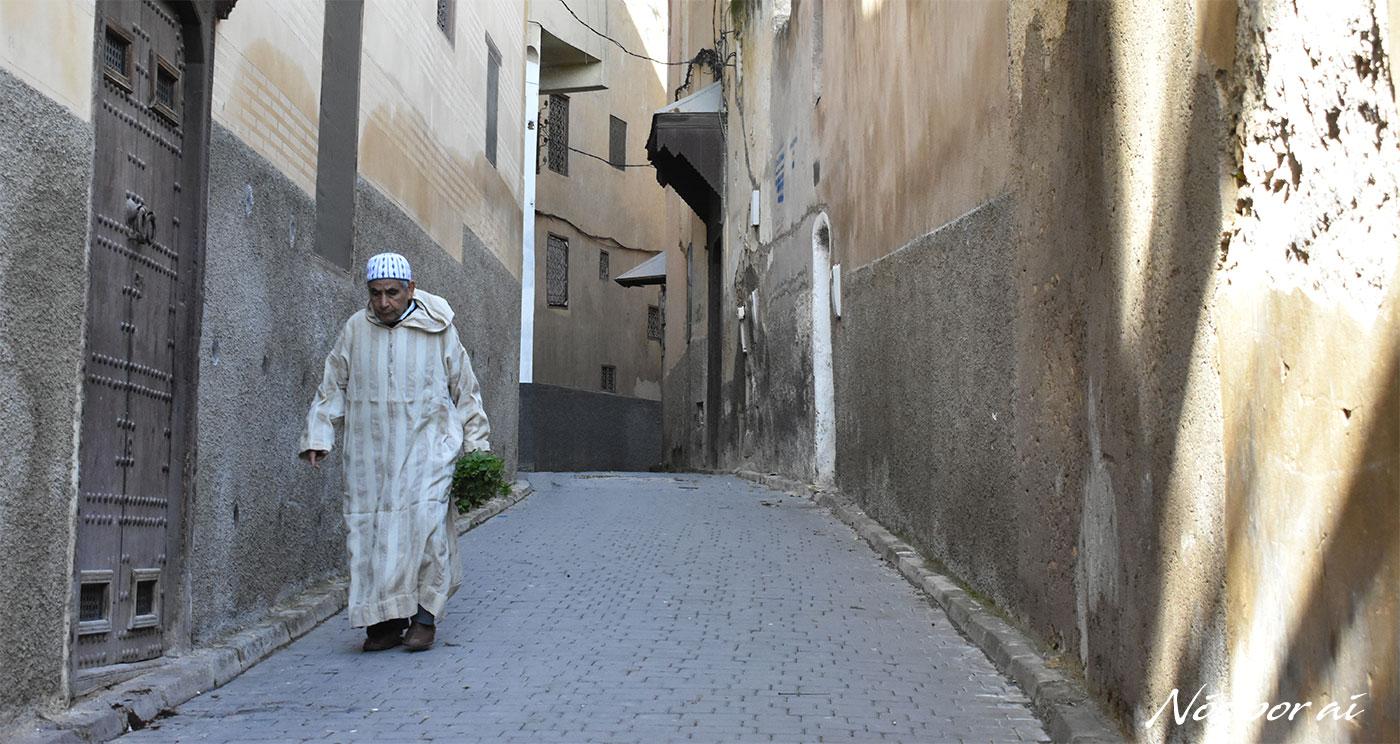 Visitar Fez, a capital espiritual e cultural de Marrocos